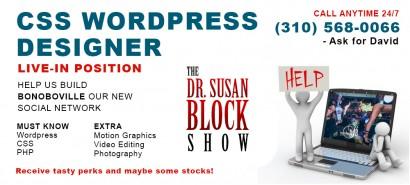 CSS_Wordpress_Designer_Ad