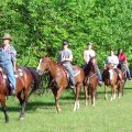 Horse Boarding Ranch & Lessons (Granada Hills)