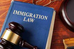 Immigration Paralegal (Sherman Oaks)