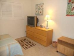 $1250 / 1300ft2 - Furnished Private Bedroom / Private Bathroom (Palms)